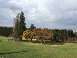 イルムの丘の紅葉の写真